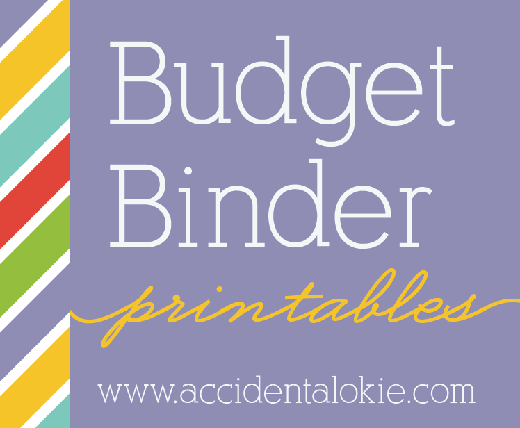 Below are PDFs so you can create your own budget binder.
